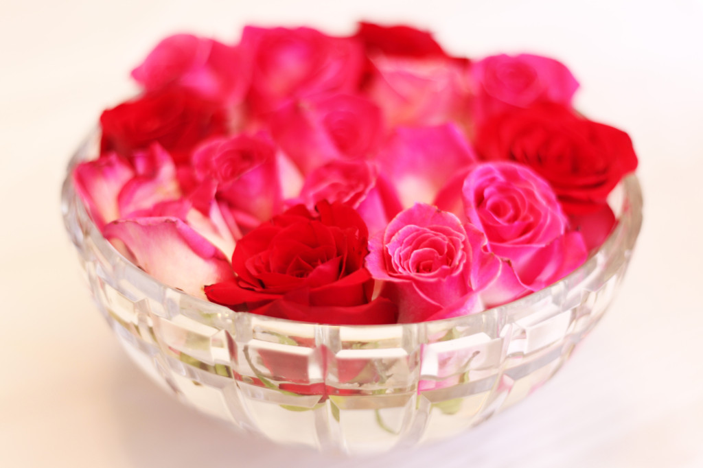 rose2 copy