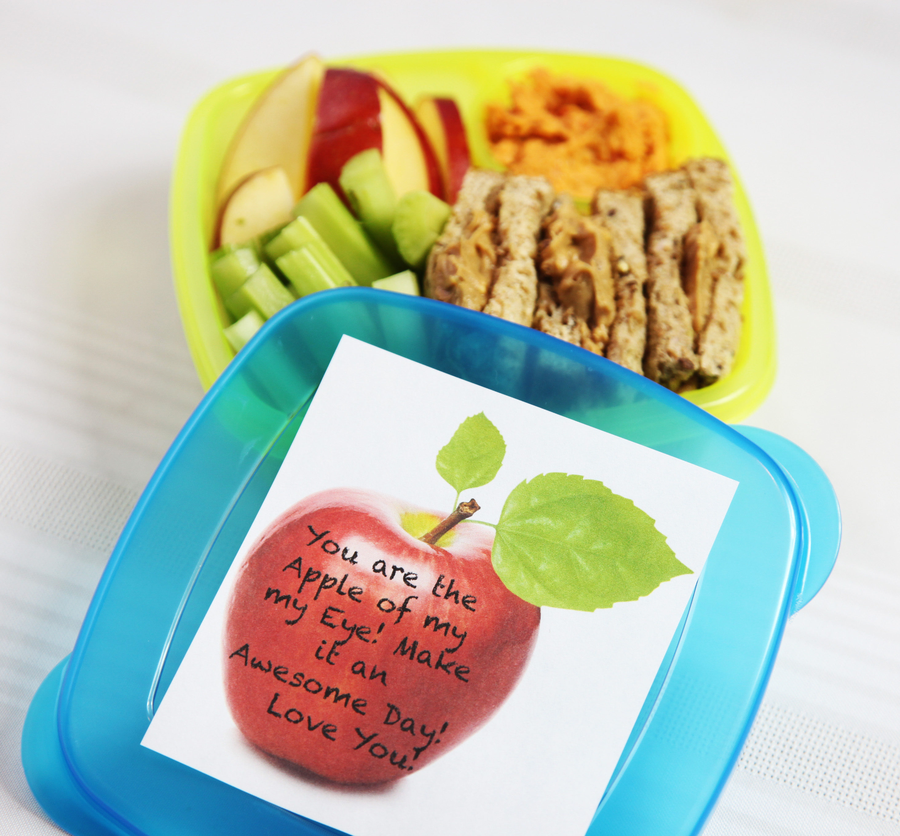practically perfect planner diy lunchables bento boxes. Black Bedroom Furniture Sets. Home Design Ideas